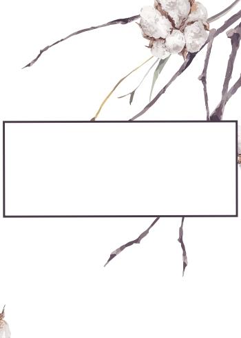 cotton & branches - 1