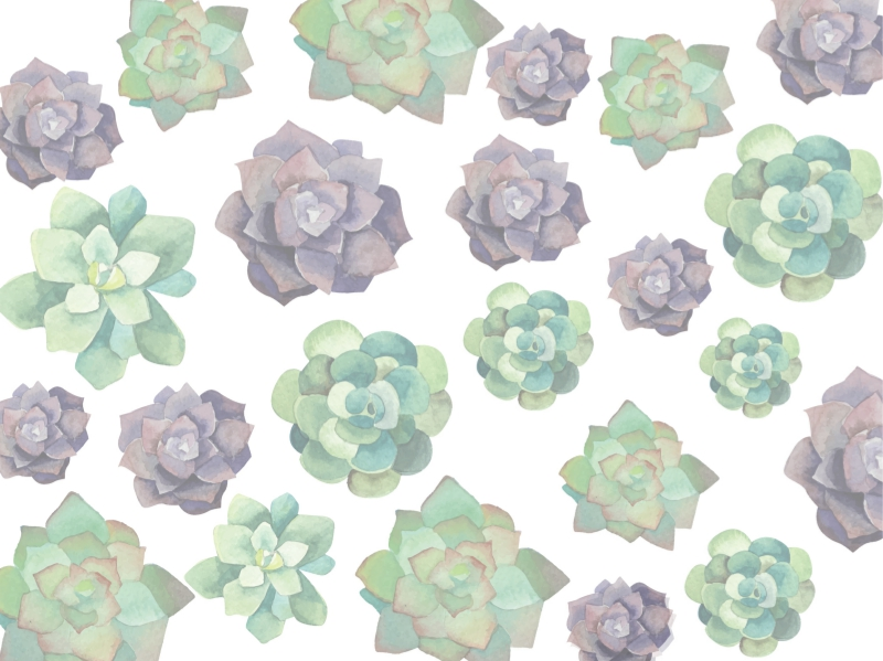 Flower Bouquet - 1